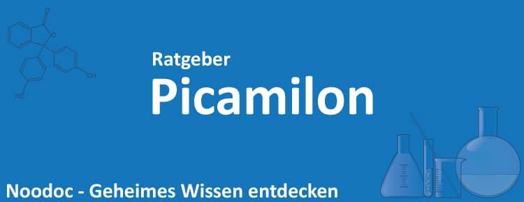 Picamilon Erfahrungen