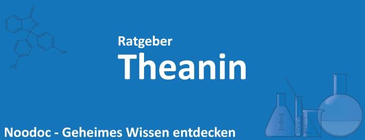 Theanin Erfahrungen