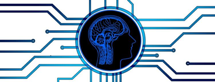 Wir zeigen, wie du deine Gehirnleistung schnell steigern kannst.