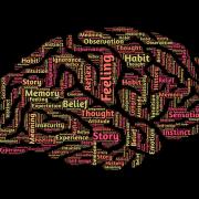 Choline Bitartrate fördert die Funktionen im Gehirn.