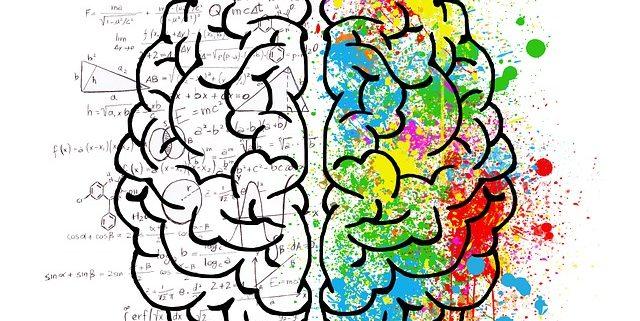 Centrophenoxin stärkt als Nootropikum die Gehirnleistung