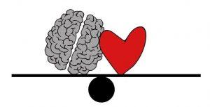 CBD und die Auswirkung aufs Gehirn. Ein sinnvolles Nootropikum?